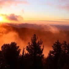 Oregon State – 9 unvergessliche Roadtrip-Erlebnisse