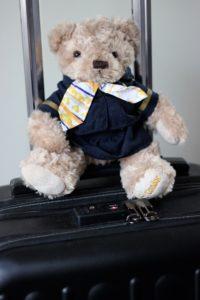 Teddy-Pilot