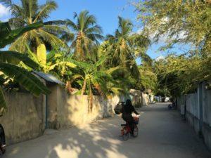 Malediven_Straße