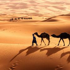 Marokko – ein Basar der Sinne