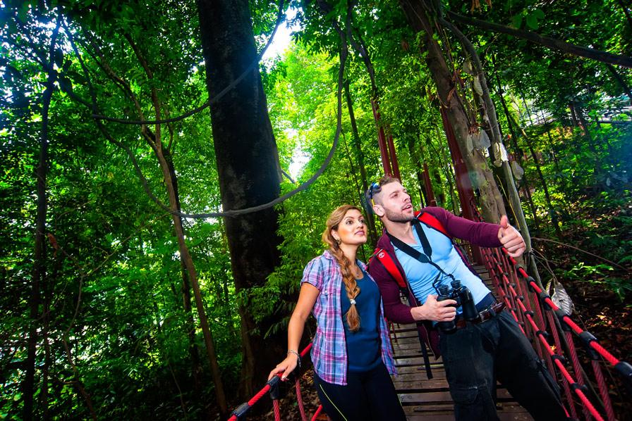Kuala Lumpur, Eco Forest Park, Regenwald