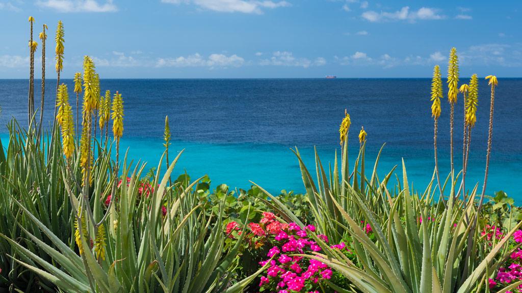 Curacao, Meer, Karibik