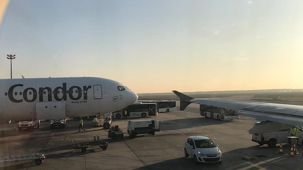 Blick aus Flugzeugfenster auf ein parkendes Condor Flugzeug