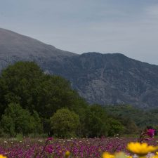 Wanderurlaub auf Kreta
