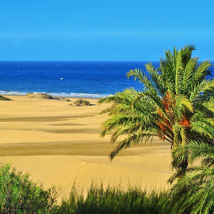 Flug Gran Canaria Hier Flug Buchen Mit Condor
