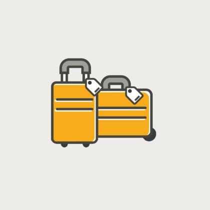 ekstra bagage pris