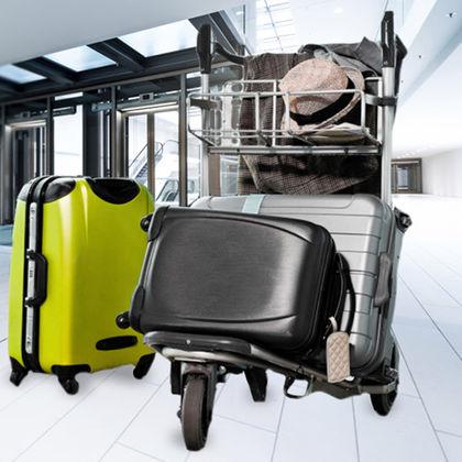 baggage pets condor. Black Bedroom Furniture Sets. Home Design Ideas